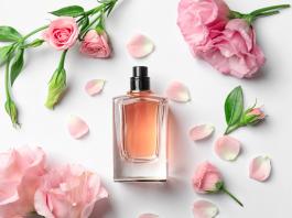 Blog Zema traz para você os melhores perfumes femininos importados!