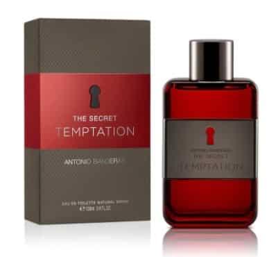 The Secret Temptation Antonio Banderas