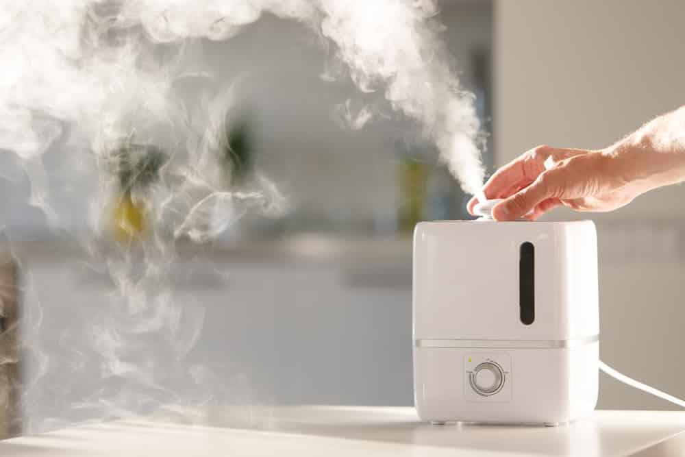 Para que serve o umidificador de ar?